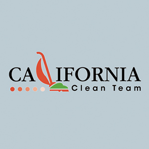 California Clean Team screenshot